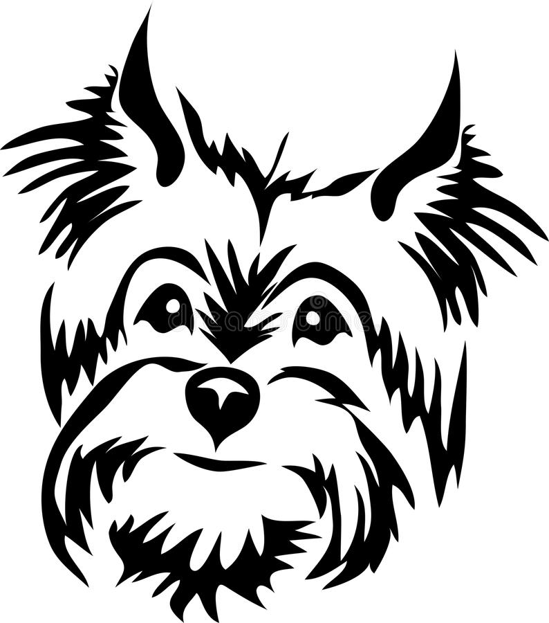 Download yorkshire terrier head stock vector illustration of dogs 73493915