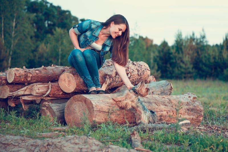 Yorkshire Terrier Une fille avec de longs cheveux se repose sur une pile des arbres sci?s avec un terrier de Yorkshire de race de photos stock