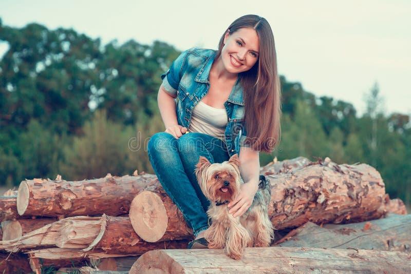 Yorkshire Terrier Une fille avec de longs cheveux se repose sur une pile des arbres sci?s avec un terrier de Yorkshire de race de images stock