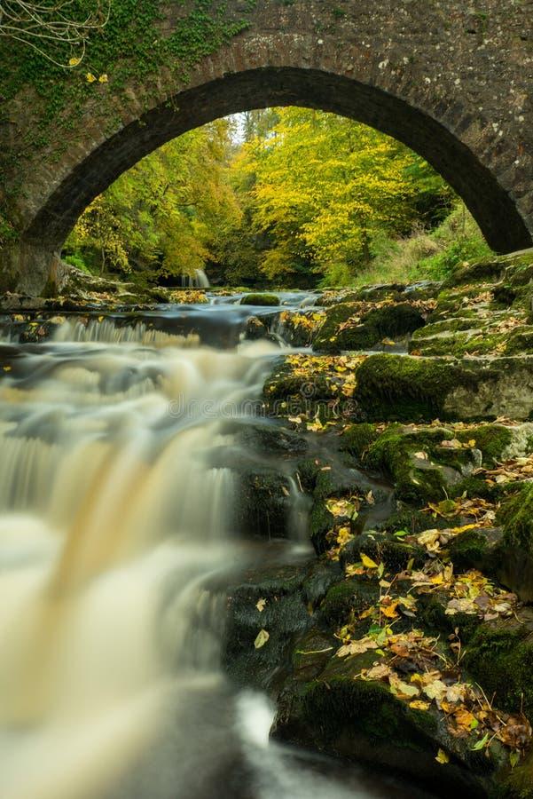 Yorkshire vattenfall i ursnygg höstfärg arkivbild