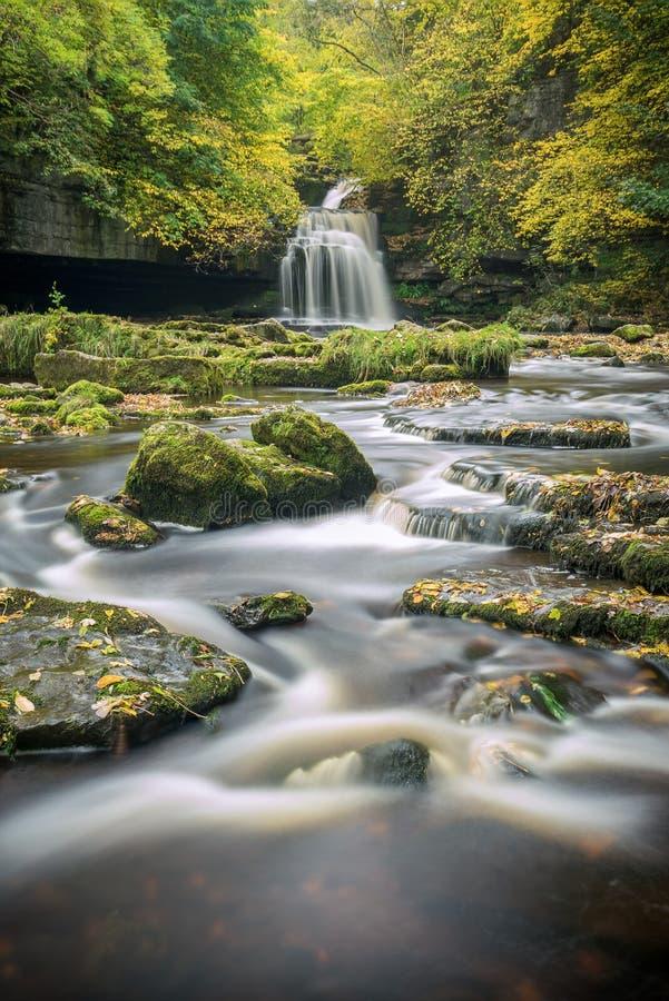 Yorkshire vattenfall i ursnygg höstfärg arkivbilder