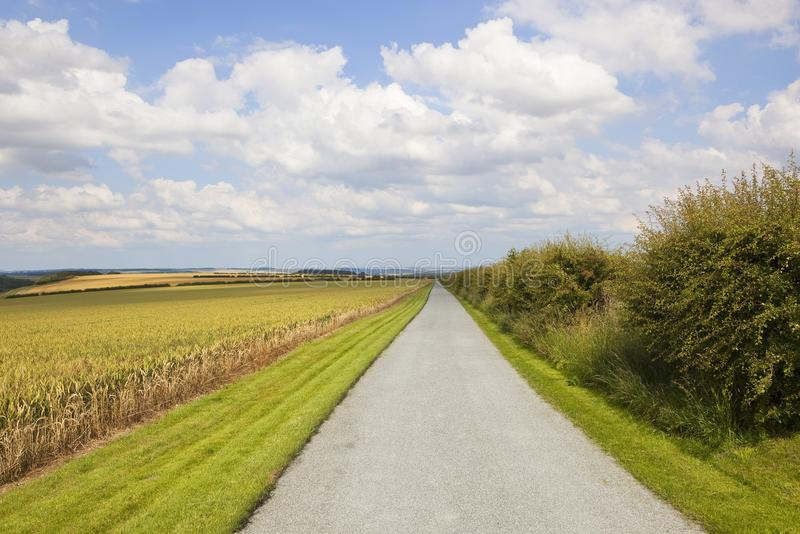 Yorkshire wolds farm track. A newly surfaced farm track and cut grass verges with wheat crop and scenery under a summer blue sky in the yorkshire wolds stock photos