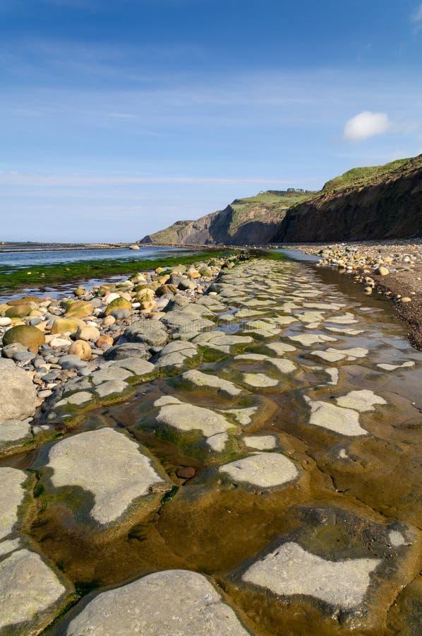Yorkshire wybrzeże - rudzików kapiszonów zatoka zdjęcia royalty free