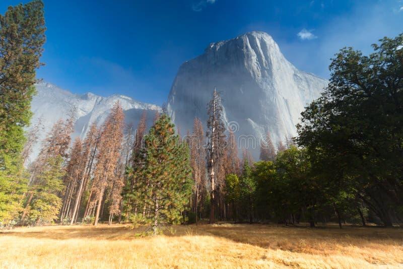 Yosemite dolina przy wschodem słońca fotografia stock