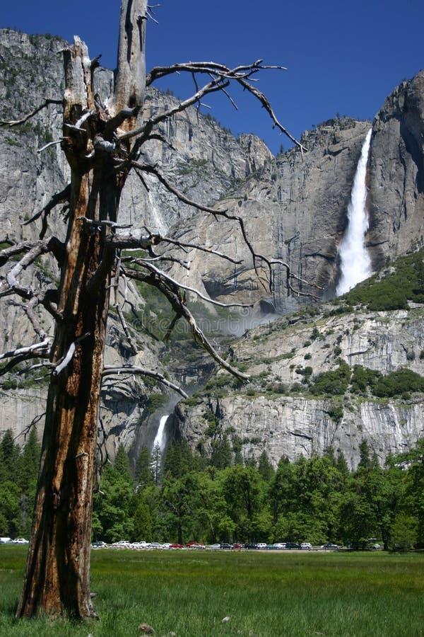 Yosemite Falls photographie stock libre de droits