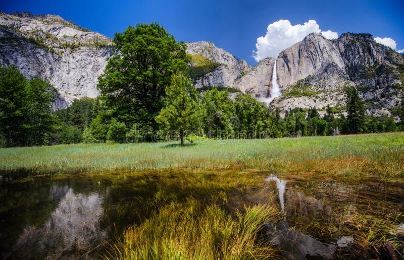 Yosemite Falls fotografía de archivo libre de regalías