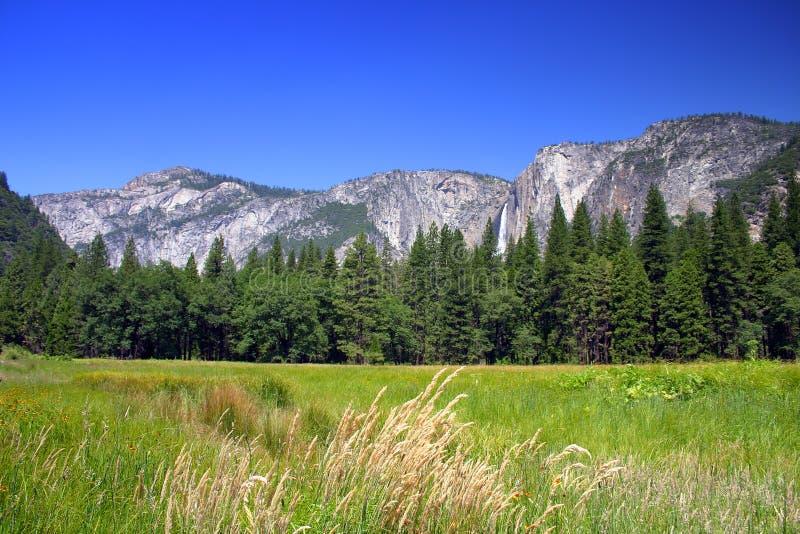 Yosemite Falls, parque nacional de Yosemite imagem de stock royalty free