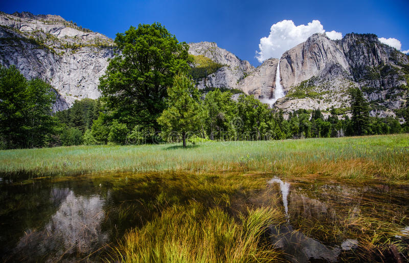 Download Yosemite Falls stock image. Image of upper, forest, nature - 97061277