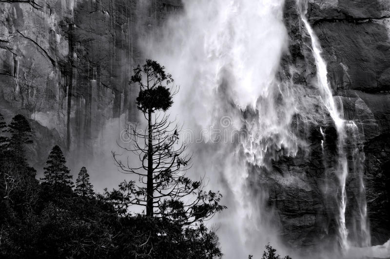 Yosemite Falls. Upper Yosemite Falls, Yosemite National Park, California, USA royalty free stock photo
