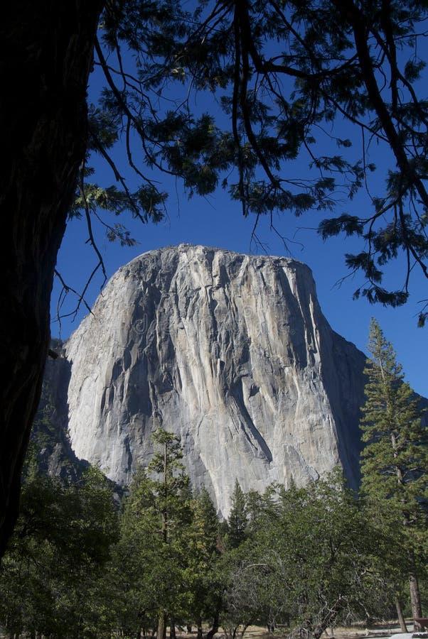 Yosemite - Gr Capità ¡ n stock afbeeldingen
