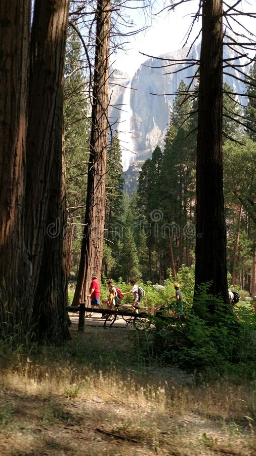 Yosemite Nationaal Park stock fotografie