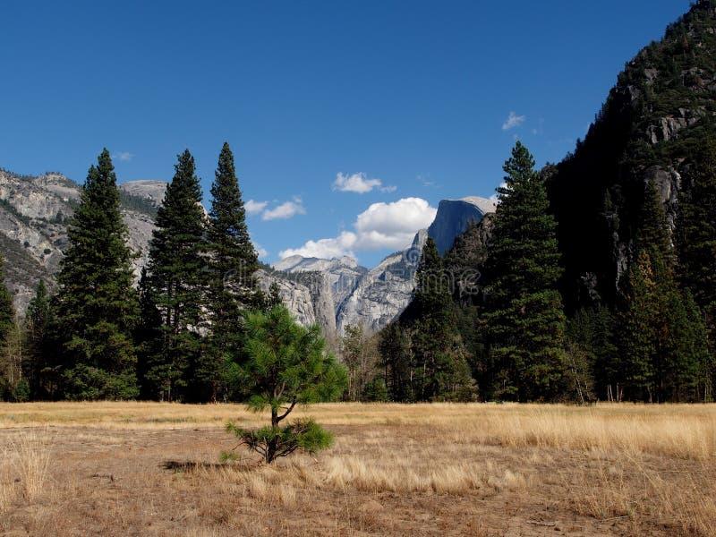 Yosemite Nationaal Park stock foto