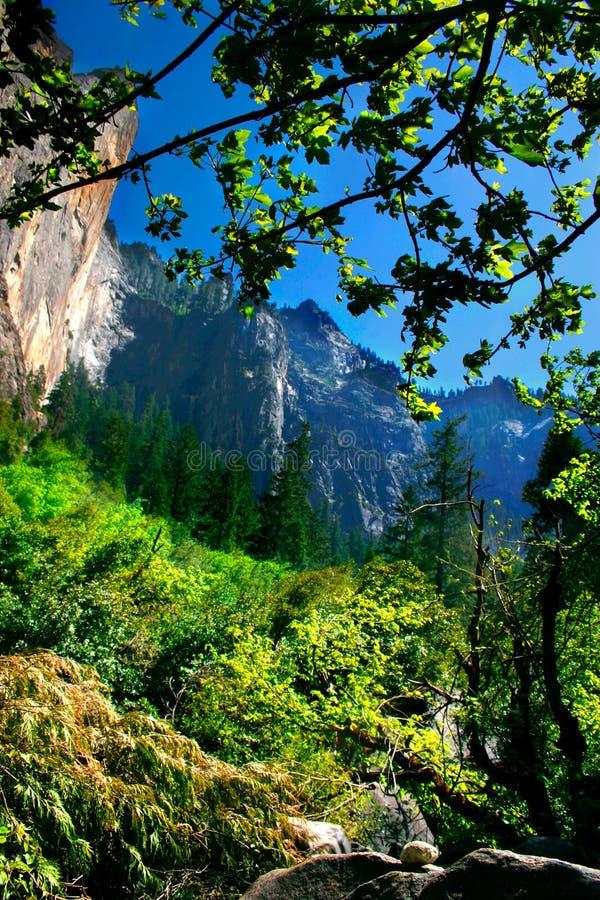Free Yosemite National Park Royalty Free Stock Image - 1123596