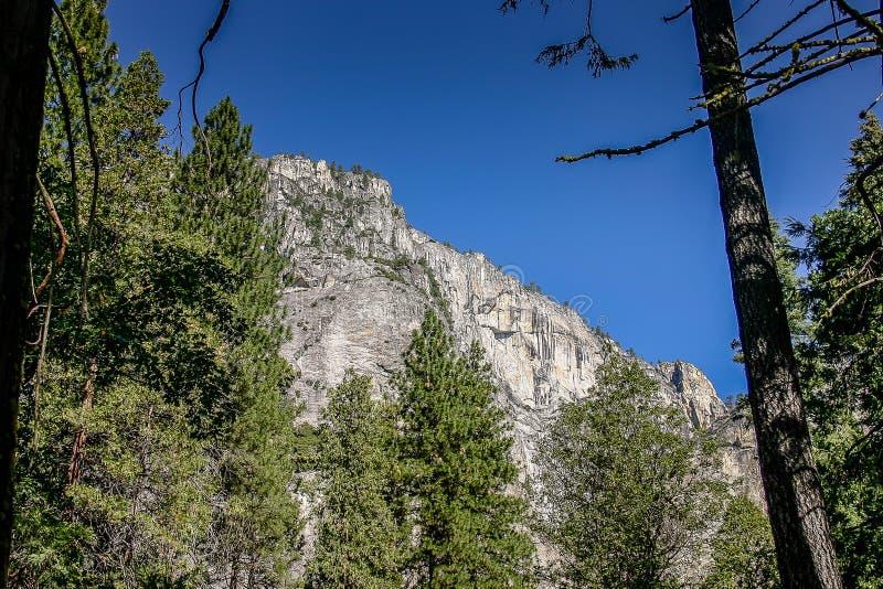 Yosemite nationalpark arkivbild