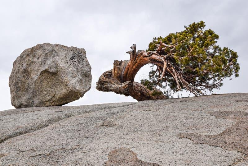 Yosemite Nationalpark, Olmsted-Punkt, Felsen, verdreht stockfoto
