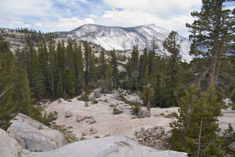 Yosemite NP, Olmsted Punkt lizenzfreie stockfotografie