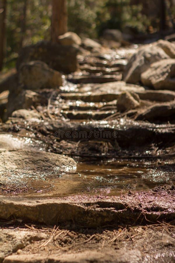 Yosemite - panorama ślad fotografia stock