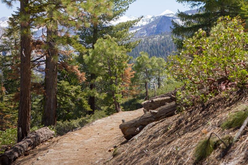 Yosemite - panorama ślad - Maj 2017 zdjęcie royalty free