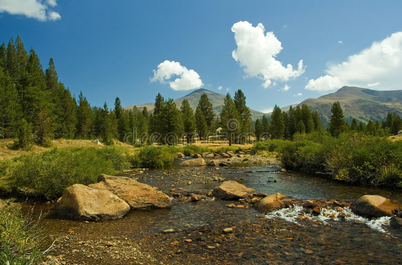 Yosemite park obrazy royalty free