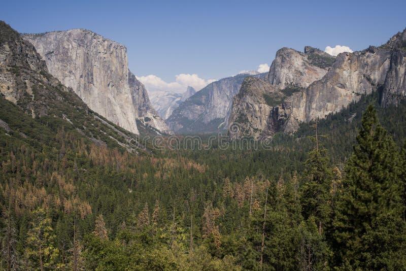 Yosemite park narodowy obrazy stock