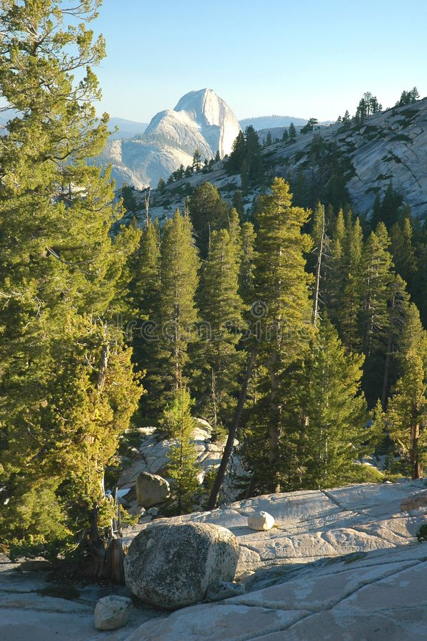 Yosemite, punto di Olmsted fotografia stock