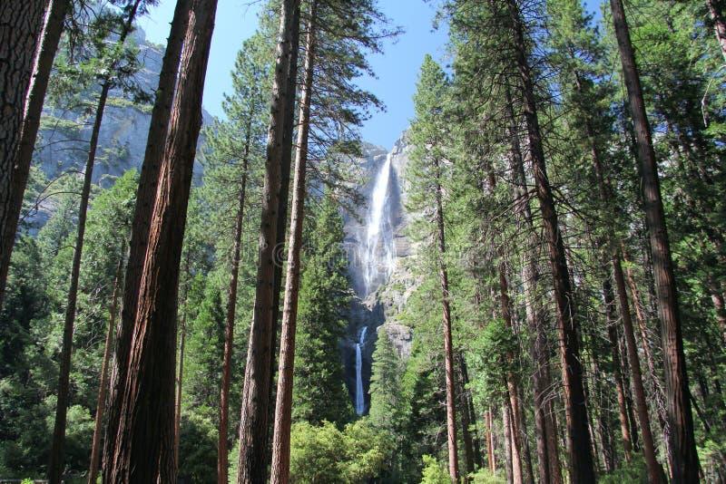 Yosemite Spadek fotografia royalty free