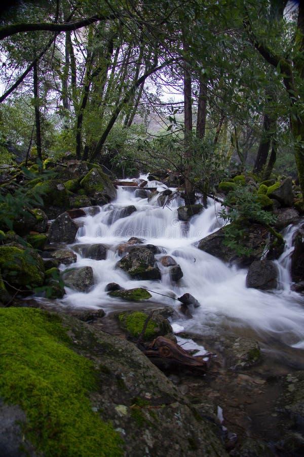 Yosemite Stream stock photos
