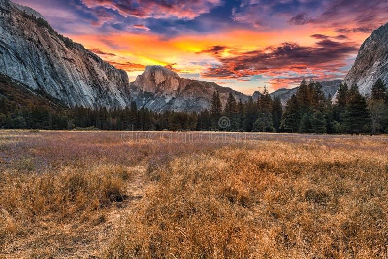 Yosemite at Sunrise royalty free stock photo