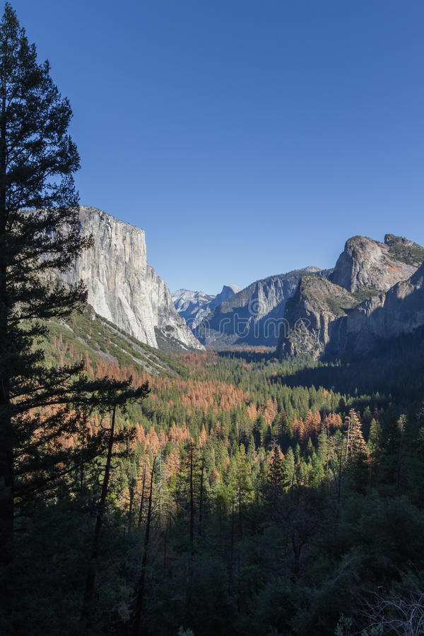Yosemite Valley with El Capitan and Half Dome royalty free stock images