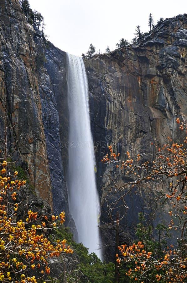 Yosemite-Wasserfall stockfotografie