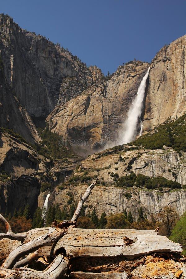 Yosemitedalingen Stock Afbeelding