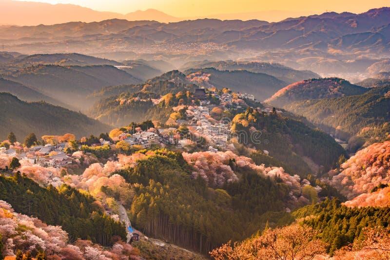 Yoshinoyama,日本在春天 免版税库存图片