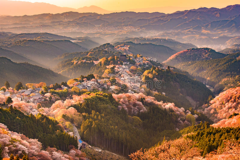 Yoshinoyama, Giappone in primavera immagini stock libere da diritti