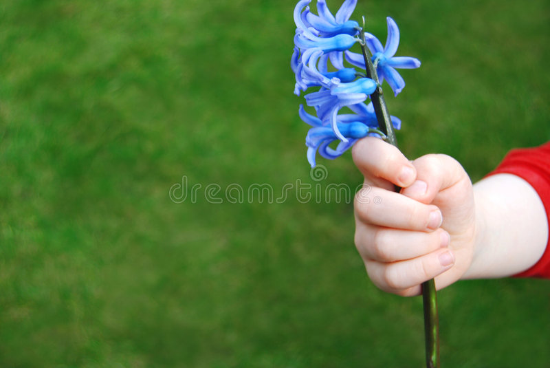 Download For you 2 stock image. Image of bright, field, give, extend - 4737237