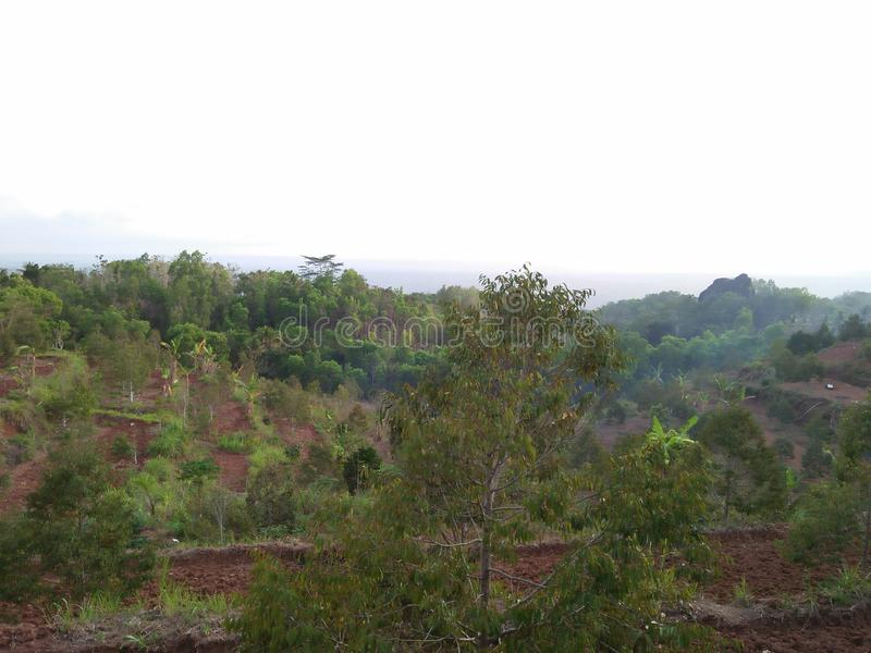 The scenery is presented by beautiful hills and trees. You can get this view in the country of Indonesia as traveling material, only cheaply royalty free stock image