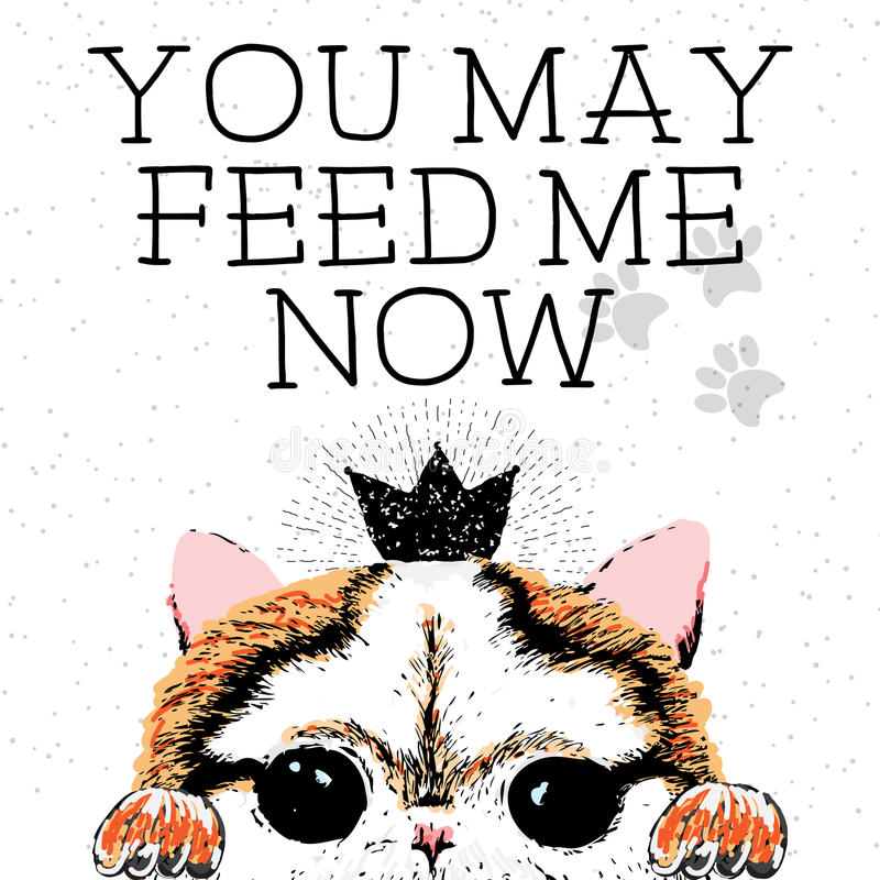 You may feed me now, hand drawn card and lettering calligraphy motivational quote. For cat lovers and typographic design. Cute, friendly, smiling, inspirational stock illustration