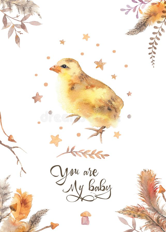 You are my baby - watercolor chicken invitation card decorated w stock illustration
