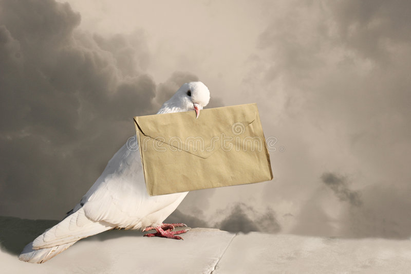 You've got a mail. Photo of pigeon with letter on sky background in sepia tones