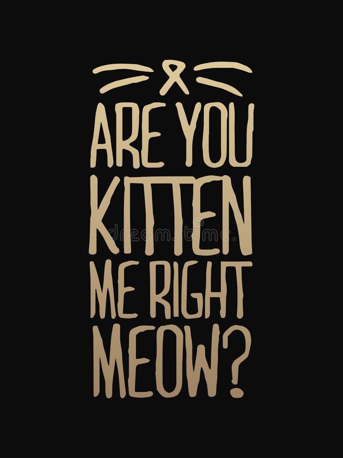 You' ve kat om katje te zijn me juiste miauw - hand getrokken die het dansen het van letters voorzien citaat op de witte ach vector illustratie