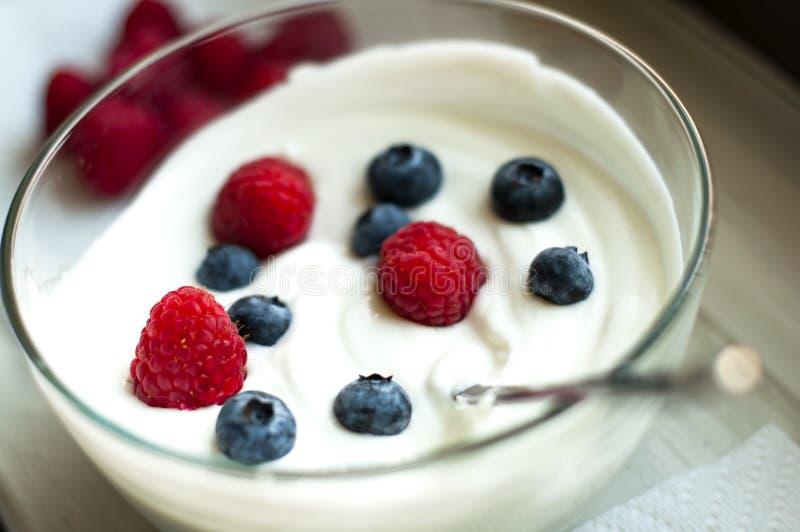 Yougurt fotografia stock libera da diritti