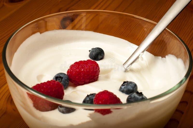 Yougurt fotografia de stock