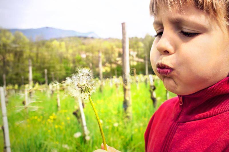 Youn chłopiec podmuchowy dandelion po środku natury zdjęcie stock