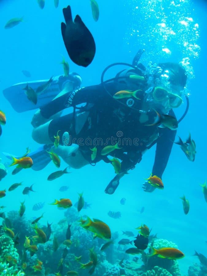 Yound人佩戴水肺的潜水水下在海洋 免版税库存照片