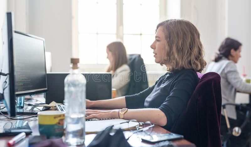 Yound ägnade det kvinnliga laget för programvarubärare som arbetar på den skrivbords- datoren i IT-statupföretag arkivfoton