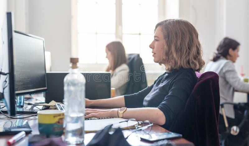 Yound dedicó el equipo femenino de los desarrolladores de software que trabajaba en el equipo de escritorio en compañía del statu fotos de archivo