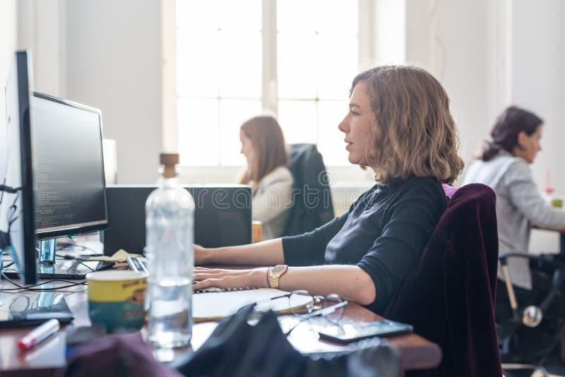 Yound devotou a equipe fêmea dos programadores de software que trabalha no computador de secretária na empresa do statup da TI fotos de stock