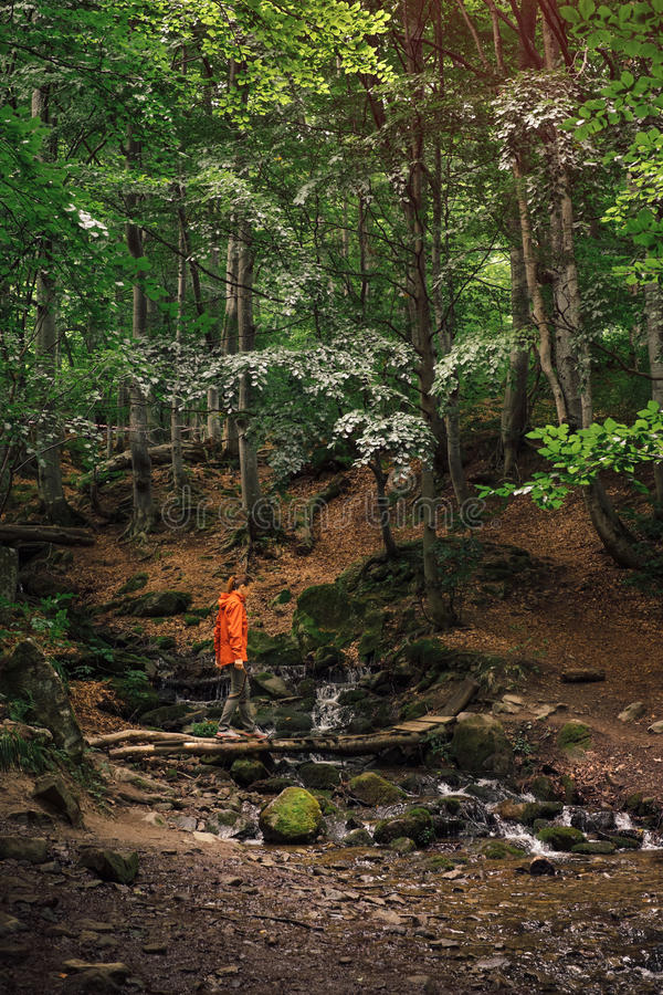 Download Young Active Woman Hiking In Green Forest Stock Photo - Image: 83703269