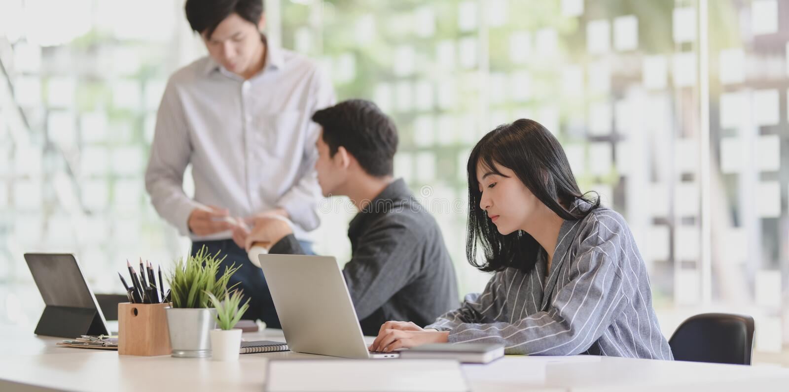 Young businesswoman working on her project with her team members discussing in the background stock photos