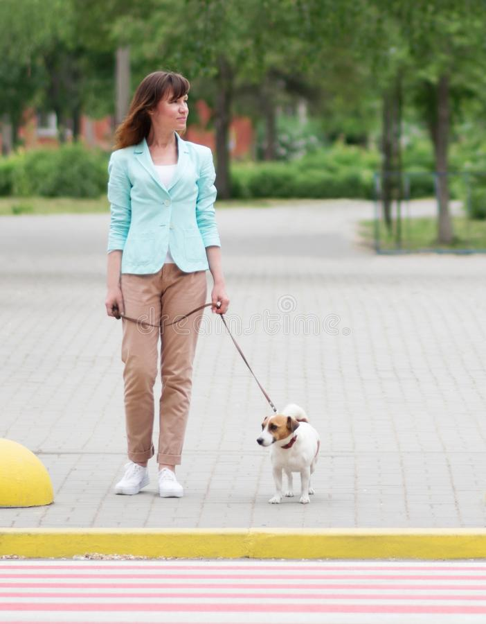 Young adult caucasian pretty woman crossing street on crosswalk with small dog jack russel terrier at summer day. Female royalty free stock photos