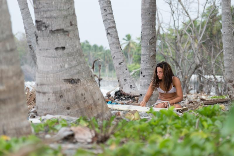 Young adult caucasian woman waxing her surfboard stock image